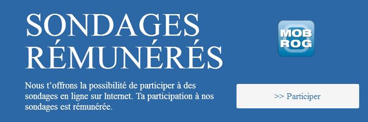 Participez à des sondages en ligne sur Internet et gagnez 0.5 à 3 euros par sondage - MOBROG